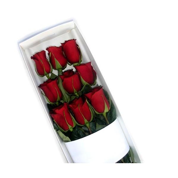 Flores a domicilio caja con 9 rosas rojas enamora con for Plantas a domicilio santiago